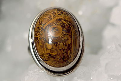 Jaspis Landschap Zilveren Ring